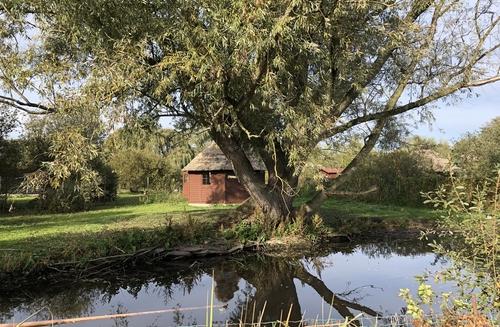Weide im Vogelpark Niendorf