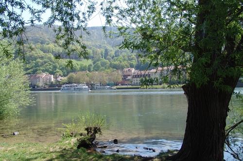 Blick auf ein Neckarschiff