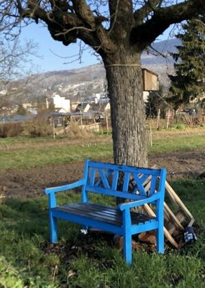 Eine blaue Holzbank