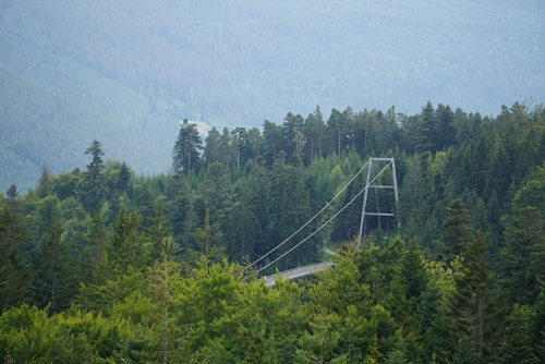 Blick auf die Hängebrücke Wildline