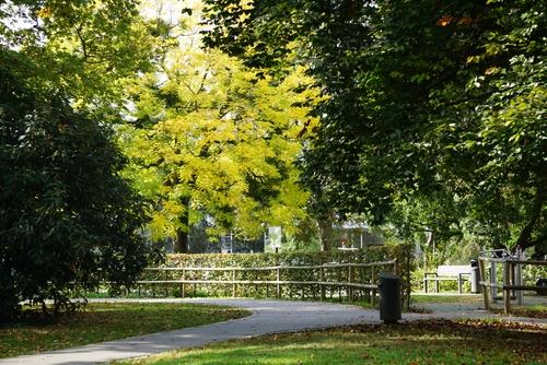 Im Park am Schwanenteich